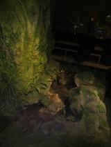 店内に森と川2