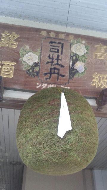 (8)酒林・大2