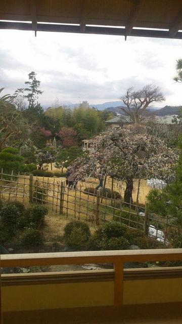 (10)庭を眺める