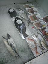 鮮魚.jpg