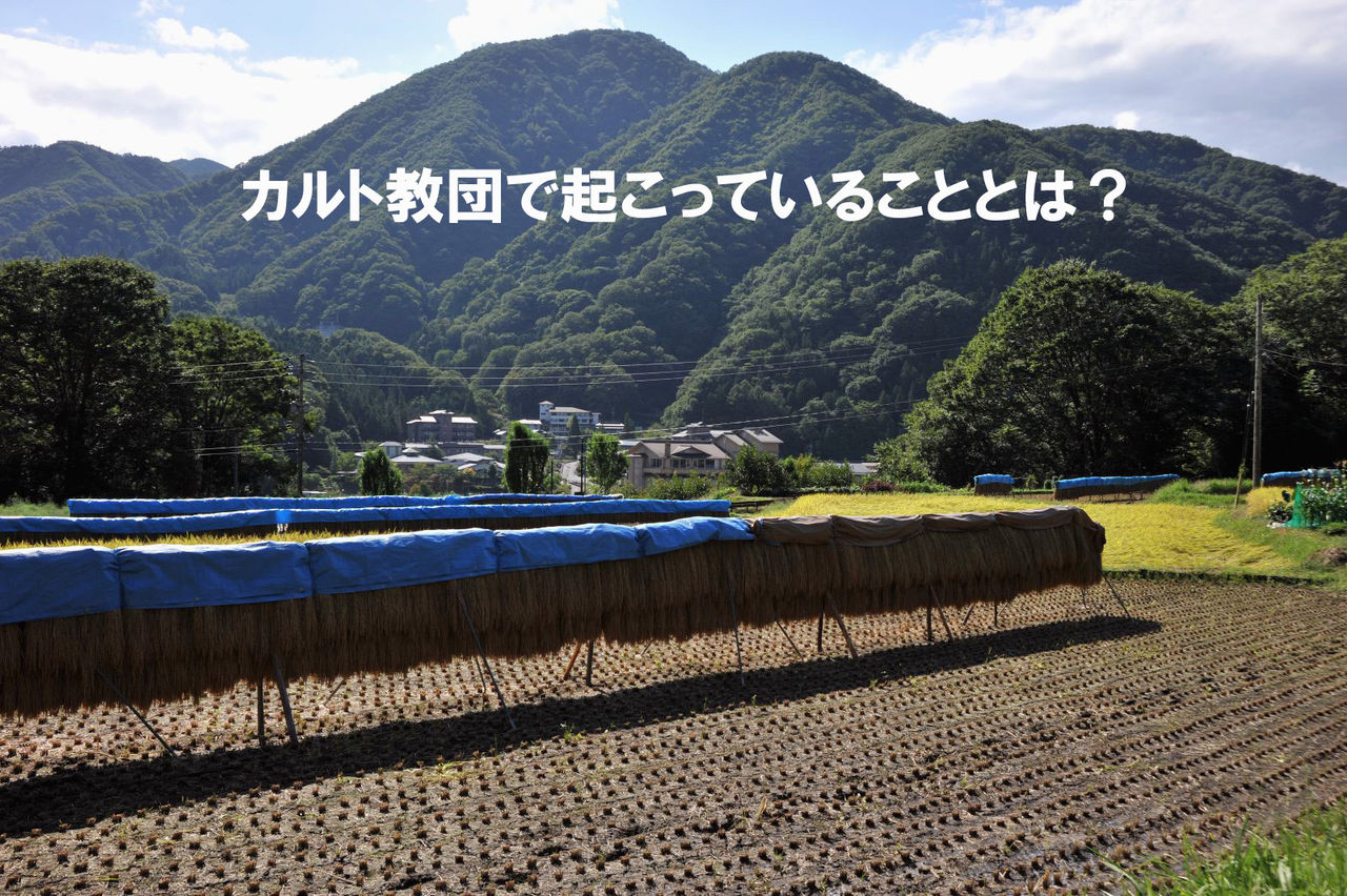 カルト 宗教 日本