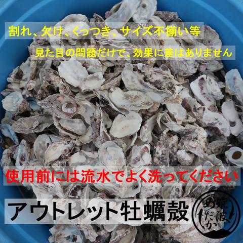アウトレット牡蠣殻3