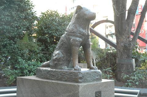 hachikozo2008shibuyaeki3