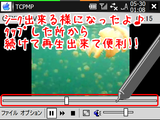 TCPMPflv_0.2seek.png