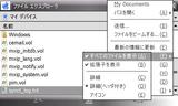 20070722_2_FileExpEx.png