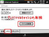 TCPMPflv_IE2.png