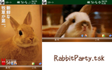 RabbitParty