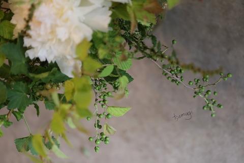 切り花の魅力