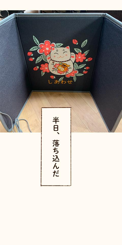 tsumublog_19_600_06
