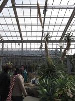 1703植物園 (15)