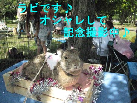 うさんぽ3_8