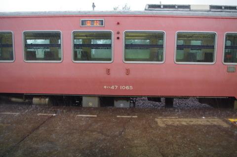 IMGP0702