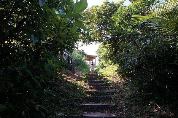 大岳 小浜島