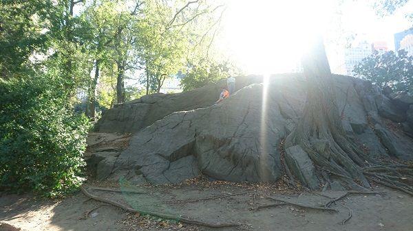 centralpark_stone