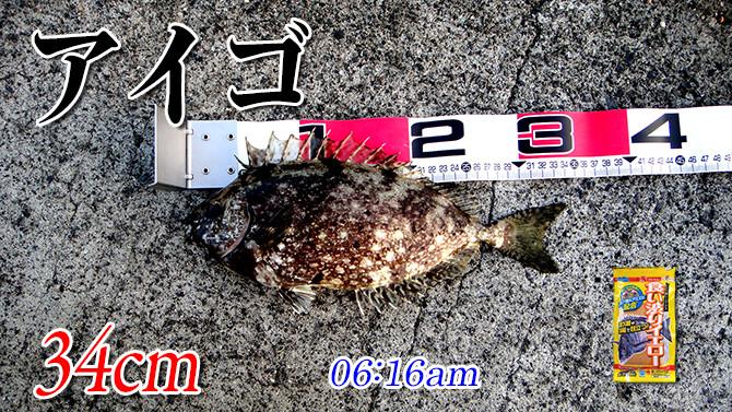 釣果01_670