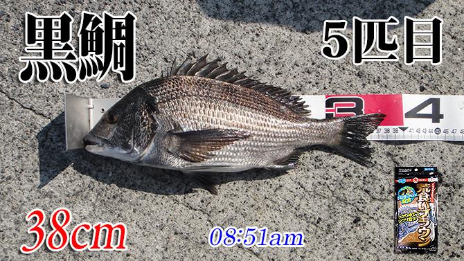 釣果(5)670