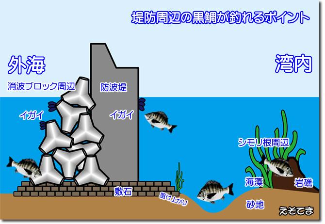 黒鯛の生息ポイント_NEW_670pix
