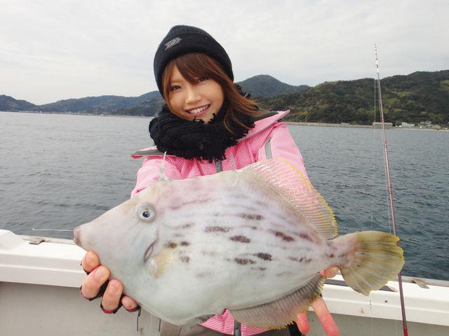 mippi_kawahagi
