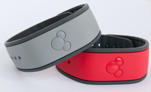 Warnerwood_Walt_Disney_World_MagicBands