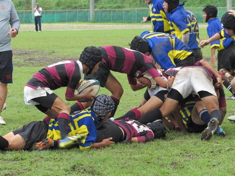 tsurumaru rugby 277