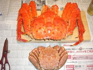 110102蟹