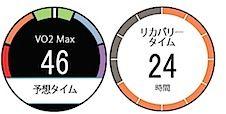 VO2max(最大酸素摂取量)