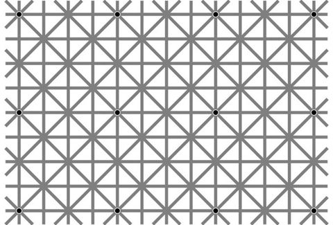 Twelve black dots cannot be seen at once