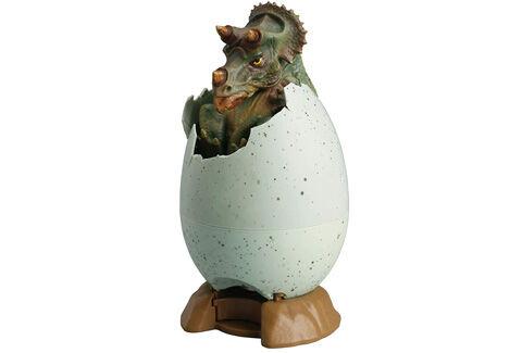 egg バンクシリーズ 恐竜の孵化 トリケラトプス