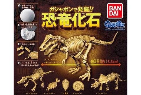 ガシャポンで発掘!!恐竜化石