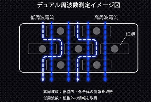 デュアル周波数測定イメージ