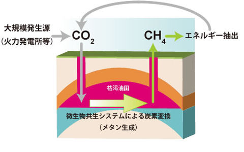 持続型炭素循環システム工学