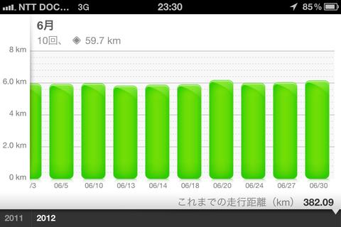 Nike+ Running アクティビティグラフ