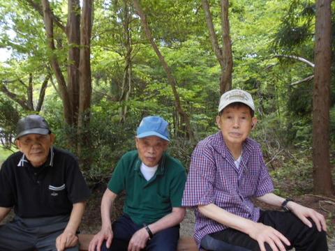 12.森林公園