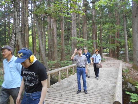 11.森林公園