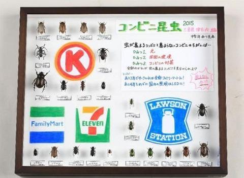 411_虫標本