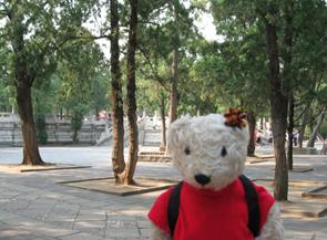 テディベア中国の旅2
