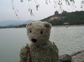 テディベア中国の旅6