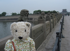テディベア中国の旅9