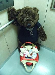 蓼科 旅行5 50体クマの荷物?