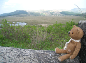 白樺湖旅行1