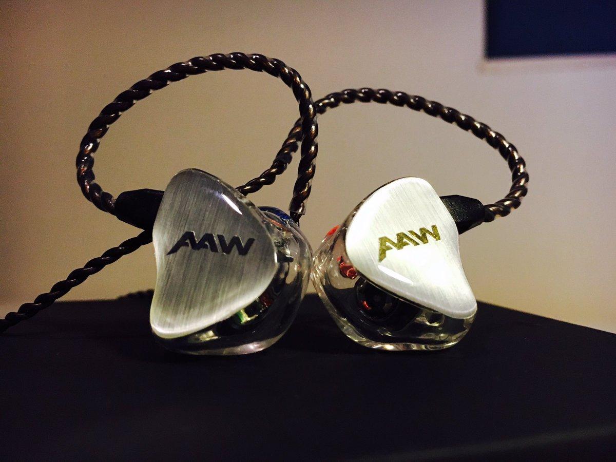 カスタムIEM】AAW W300のレビュ...