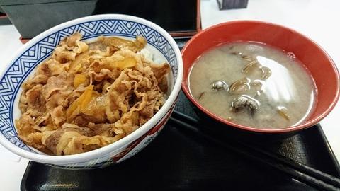 yoshinoya1
