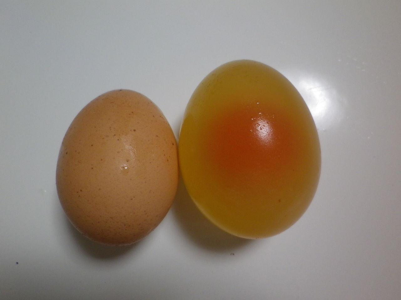 を 自由 酢 卵 研究 お に つける