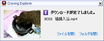 20091221_alert