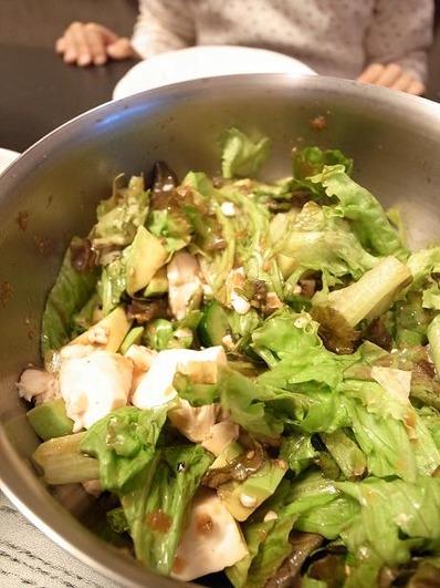 オニオンドレッシングで食べる豆腐レタスアボガドサラダb