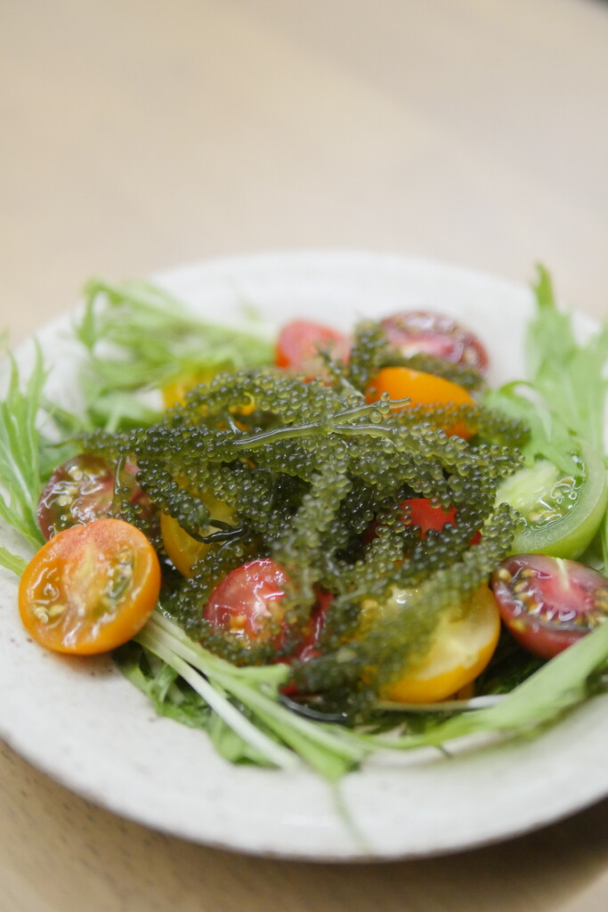 藤枝市海ぶどうカラートマトサラダ