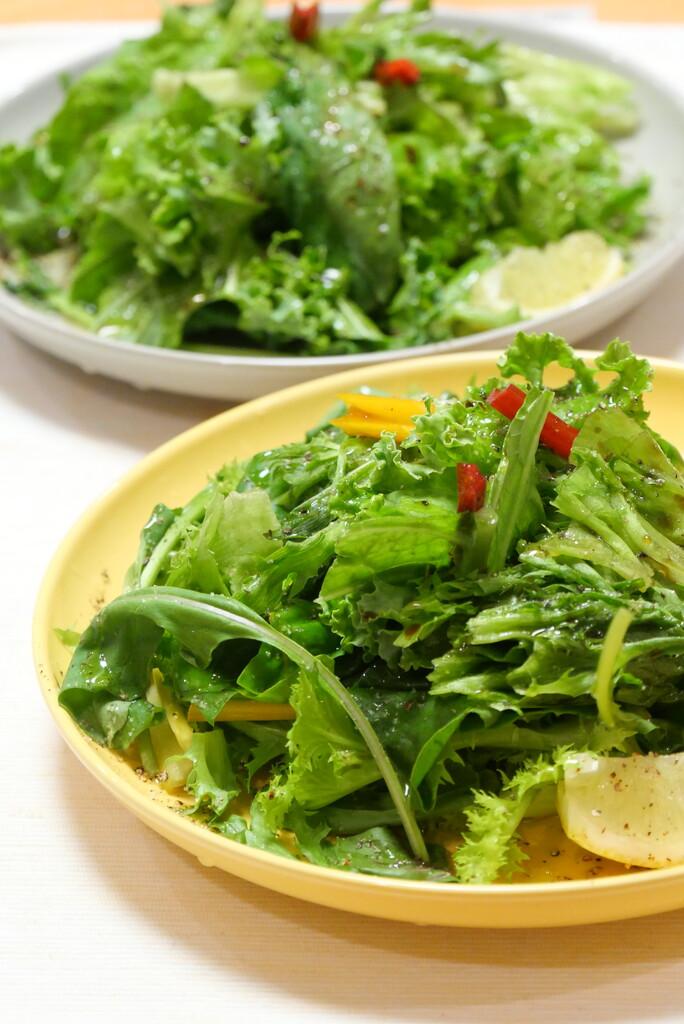 グリーンサラダたっぷり野菜