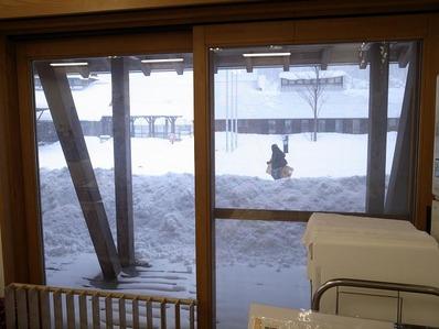 雪の秋田b
