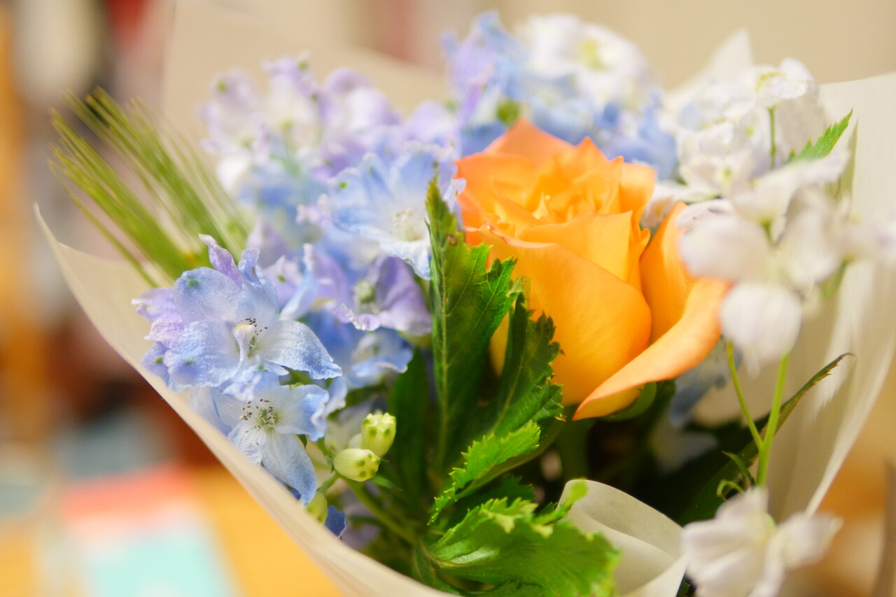 プラチナブルーのお花