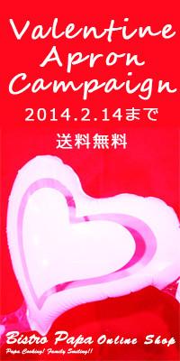 ValentineCampaign2014のコピー